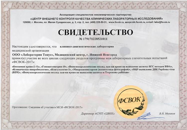 Свидетельство о участии в ФСВОК - 2017